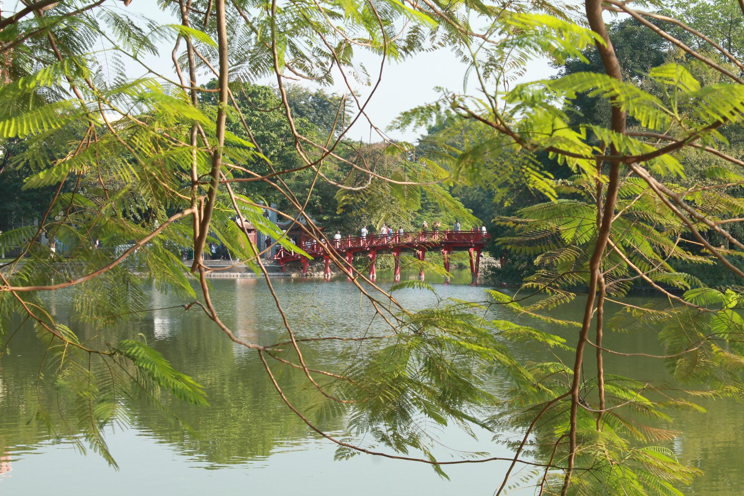 massage-tao-31 fr forest